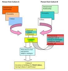 third culture model