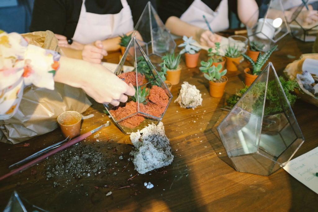 A group of people planting succulents into glass terrariums.